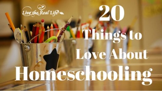 20 Things I Love About Homeschooling